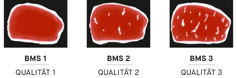 Beef Marbling Standard (BMS) der Marmorierungsgrad des Fleisches